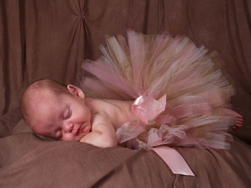 Pink and Brown Tutu Skirt